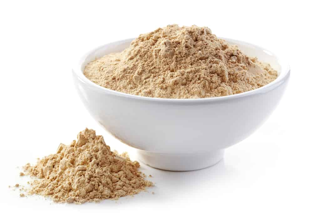 What Is Porcini Powder?